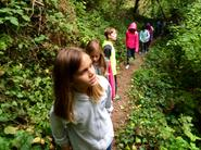 Every Thursday we hike to the creek or the redwoods.